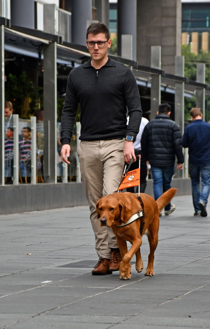 A man is walking with a golden Labrador Guide Dog down a city street