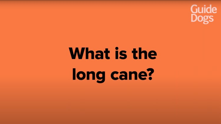 still thumbnail displaying the title What is the long cane?